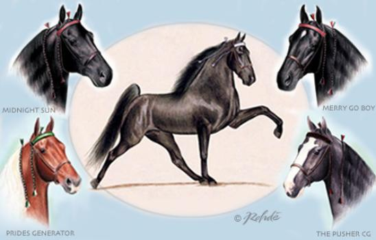 Tennessee Walking Horse Art by Rohde Fine Art